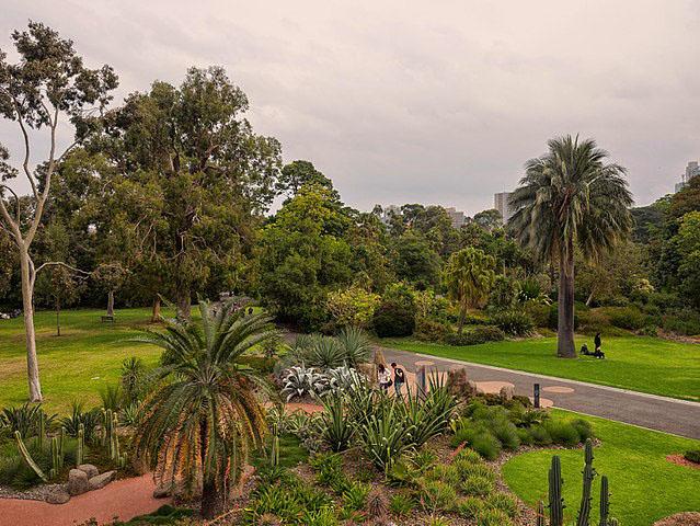 640px-Royal_Botanic_Gardens,_Melbourne_-_panoramio_(4)